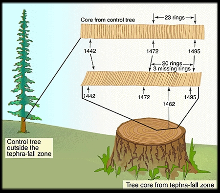 radiocarbon dating trees