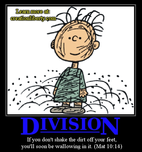 define fallacy of division