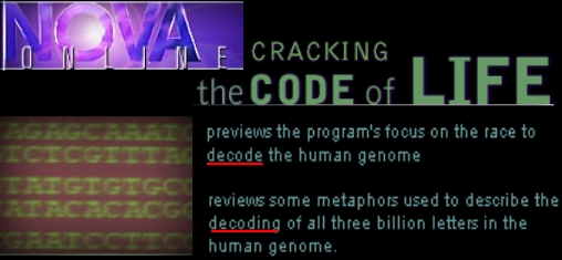 decoding dna toyota production coparative analysis How can one production operation be both rigidly scripted and enormously  flexible in this summary of an article from the harvard business review, hbs.